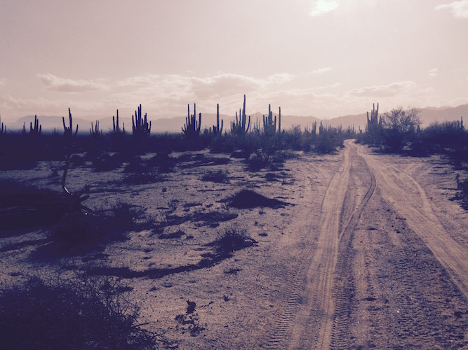 Lonely Road in Baja, Mexico