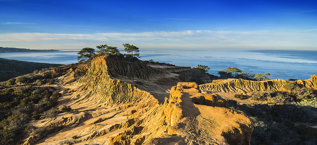 Torry Pines State Park in San Diego is a good day trip